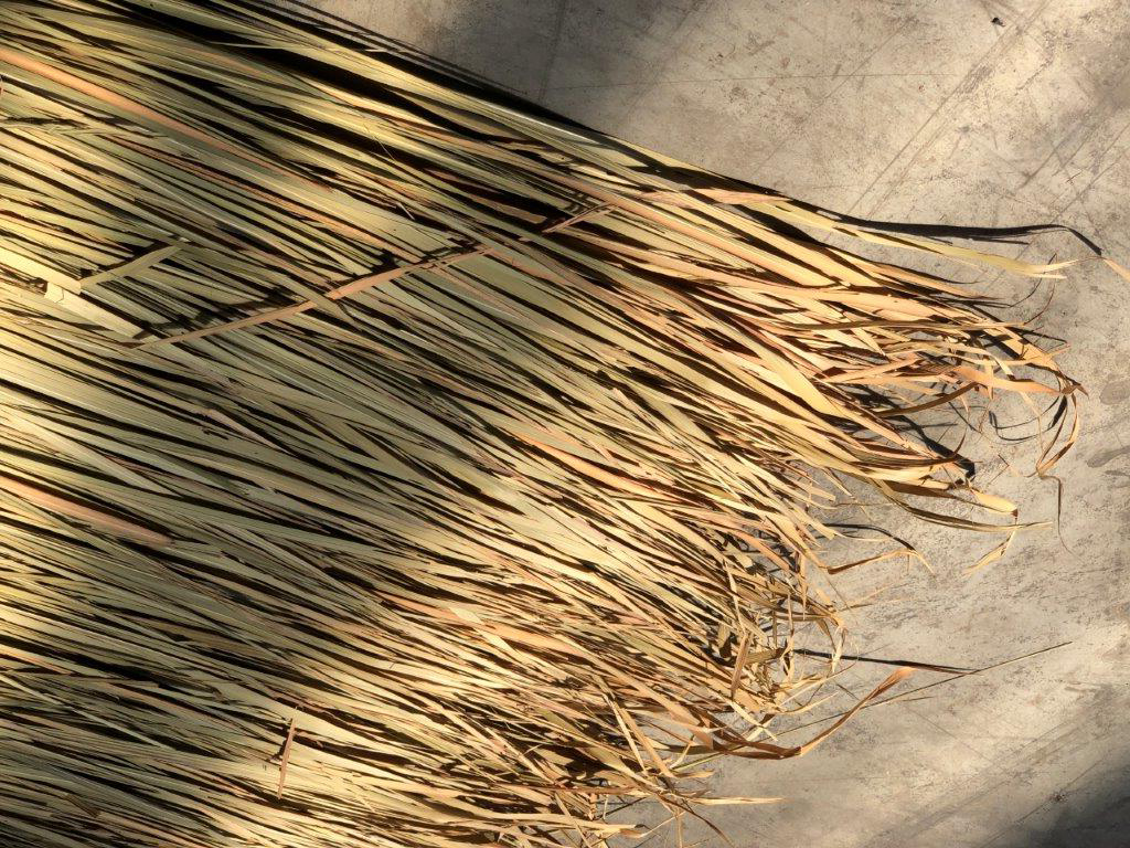 Palmendach-Paneele vom Bambushandel CONBAM