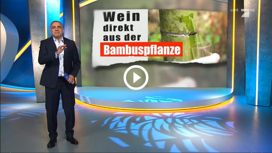 Screenshot_2019-01-17 Bekommt man aus Bambus wirklich Wein Alkohol.png