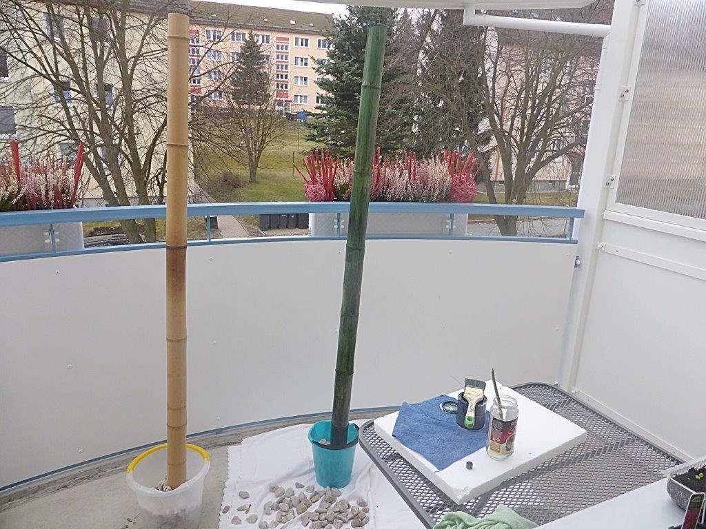 Bambusrohr grün streichen und färben mit Lasur