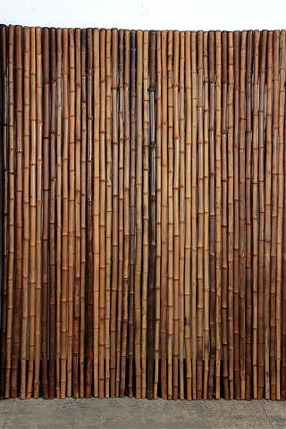 Rollzune Nigra Aus Bambus Wwwbambushandel Conbamde