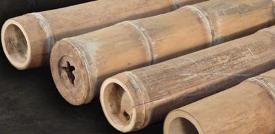 Bambus Petung Dekorativ Www Bambushandel Conbam De