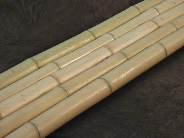 Moso Gelb Bambusrohre Www Bambushandel Conbam De