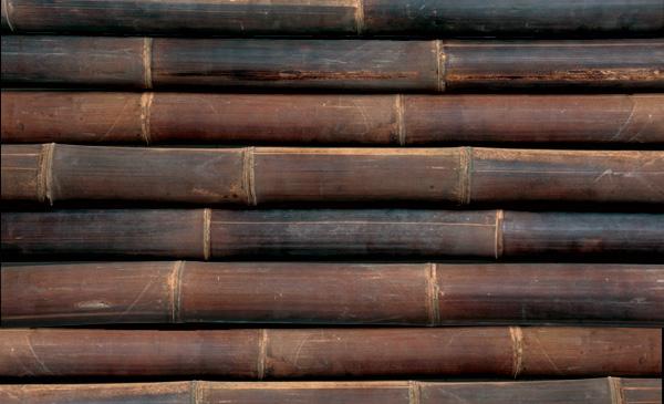 Bambus Wulung Dunkel Matt Www Bambushandel Conbam De